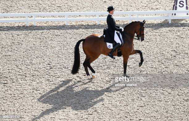 German dressage rider Soenke Rothenberger riding Cosmo in the dressage Grand Prix at the Longines FEI European Championships 2017 in Gothenburg,...