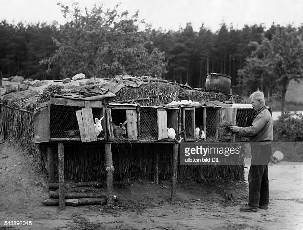 German Empire Free State Prussia Brandenburg Province Berlin Werbellinsee a farmer in front of his rabbit hutch Photographer Ullmann 1932Vintage...