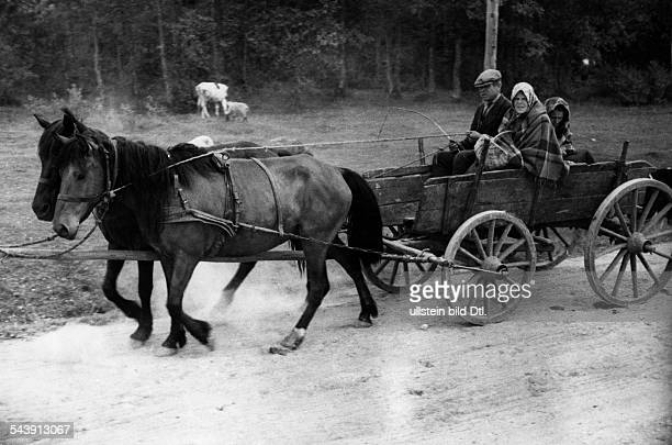 German Empire Kingdom Prussia East Prussia Province Memel Lithuanian farmers in a horsedrawn carriage Photographer UMBO 1935Vintage property of...