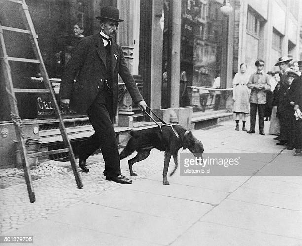 Guide dog for blind persons in operation undated probably around 1910 Photographer Huenich