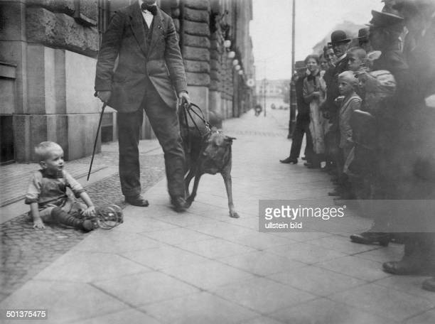 German Empire Kingdom Prussia probably Berlin Guide dog for blind persons in operation undated probably around 1910 Photographer Huenich