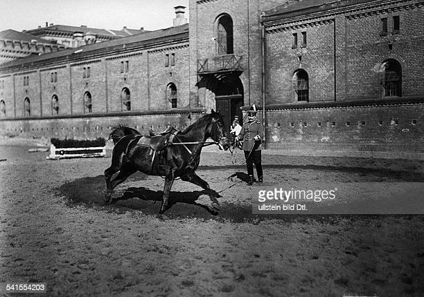 German Empire military 1st Garde Draggon Regiment in Berlin Kreuzberg dragoon lunging a horse 1905Vintage property of ullstein bild