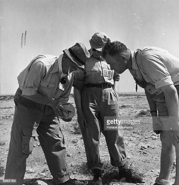 German excavation team of three former Afrika Korps officers led by Colonel Otto Vorsteher left examine a skull found in the Libyan Sands