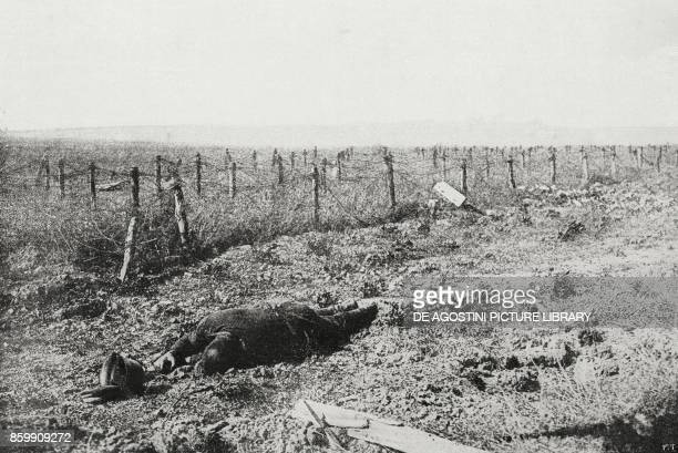 A German fallen in front of the barber wire fences front of the Aisne France World War I from l'Illustrazione Italiana Year XLV No 34 August 25 1918