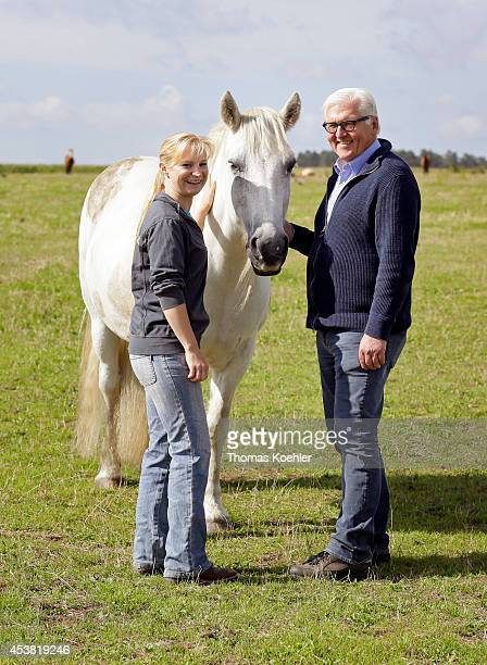 German Foreign Minister FrankWalter Steinmeier stands next to a horse during his visit to TripleDRanch on August 19 2014 in Wiesenburg Germany...