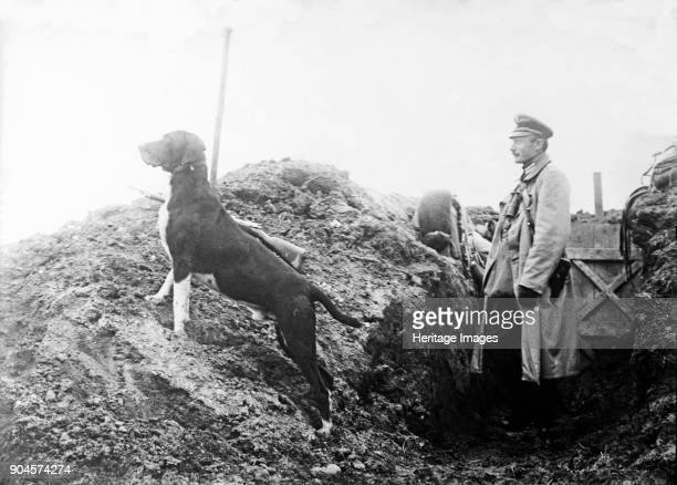 German Officer with his dog in the trenches, c.1914 ..