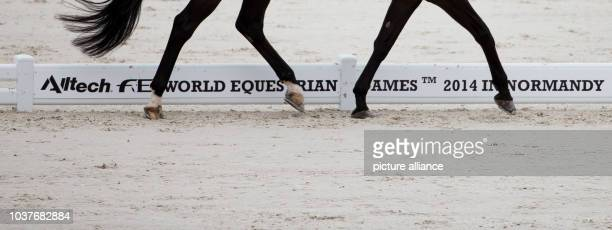 German para dressage rider Steffen Zeibig on his horse Feel Good 4 during the Para dressage team discipline at the 2014 World Equestrian Games in...