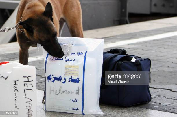 German police checks the luggage of foreign travellers with a dog at the main station on September 30 2009 in Munich Germany Germany is on a...