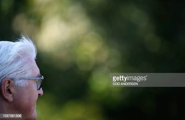 German President FrankWalter Steinmeier is pictured as he inspects a military honor guard with his Czech counterpart during a visit at the...