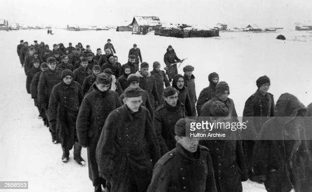 German prisoners of war NorthWest of Stalingrad