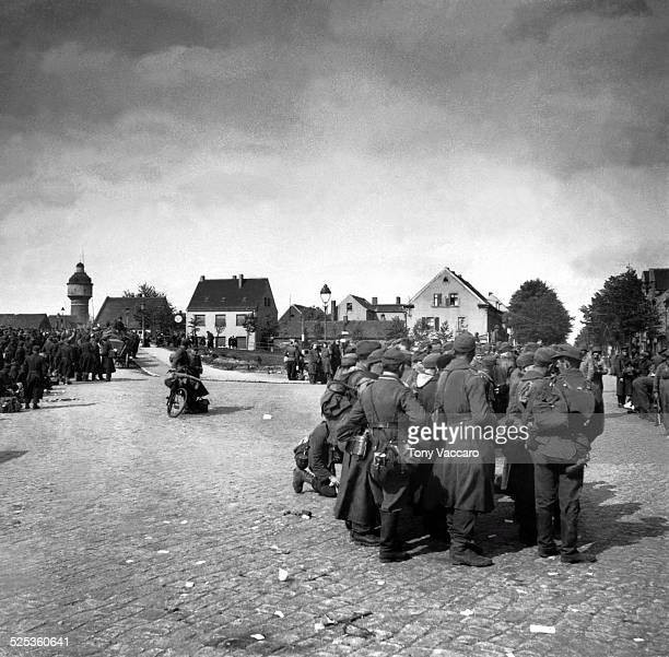 German prisonersofwar Rosslau Germany east of the Elbe World War II May 1945