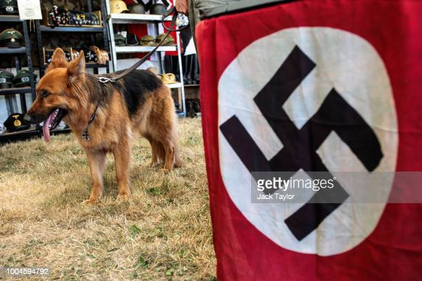 German shepherd dog stands next to a swastika flag as historical reenactors take part in the annual War and Peace Revival show at Hop Farm Country...