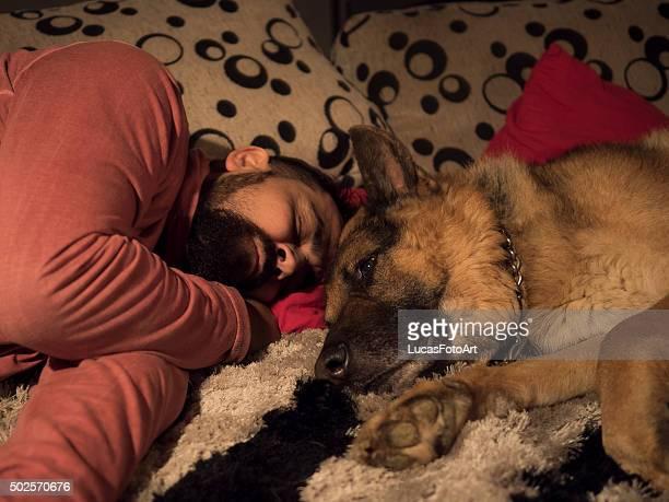 German Shepherd dog with his landlord sleeping