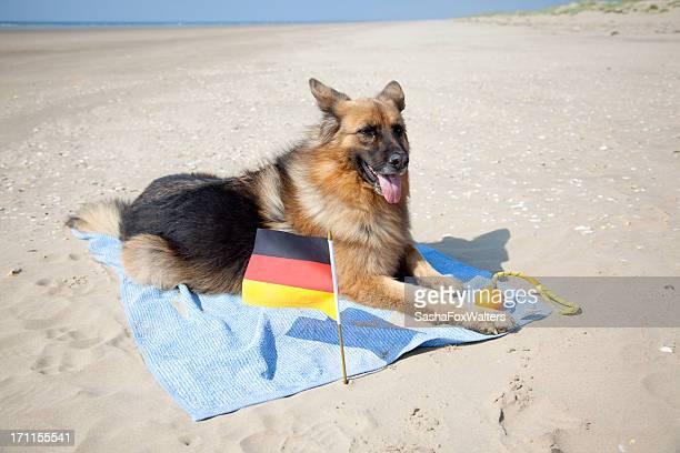 german shepherd Entspannung am Strand-Handtuch