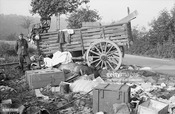 German soldier standing next to a ransacked cart with its contents strewn over a horse's corpse during the evacuation of Paris during the Second...