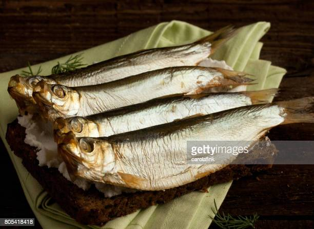 german sprats on bread - carolafink stock photos and pictures