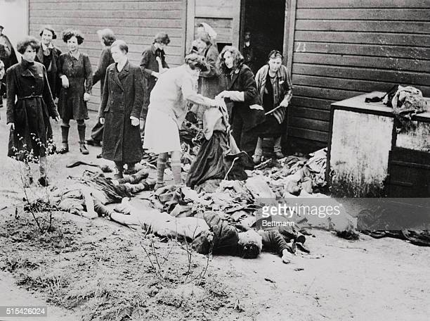 German women strip clothes from bodies of victims of sadistic Nazis at Belsen concentration camp before burning Civilians were forced to view...