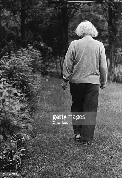 Germanborn mathematician and physicist Albert Einstein in the garden of his home at Princeton New Jersey where he he is professor at the Institute...
