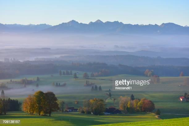 Germany, Allgaeu, autumnal landscape at morning mist