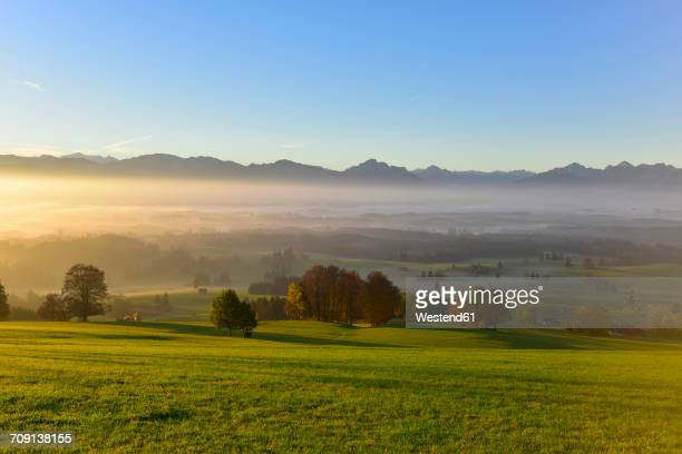 Germany, Allgaeu, autumnal landscape at sunrise