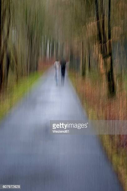 Germany, back view of two walker in autumn