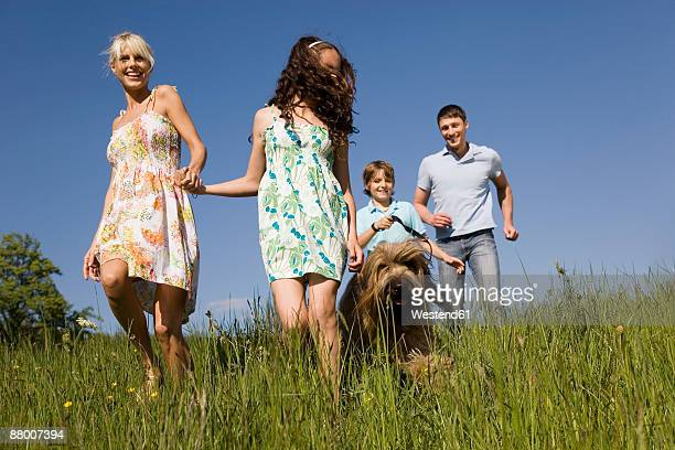 germany, baden württemberg, tübingen, family walking through meadow - baden württemberg stock photos and pictures