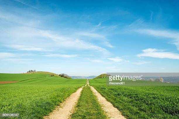 Germany, Baden Wuerttemberg, Hegau landscape, Field path to Maegdeberg