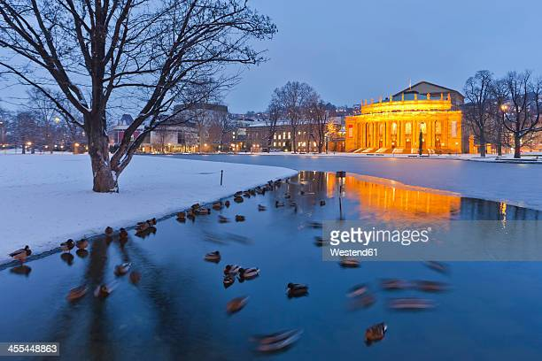 germany, baden wuerttemberg, stuttgart, ducks in eckensee pond and opera house in background - stuttgart stock pictures, royalty-free photos & images