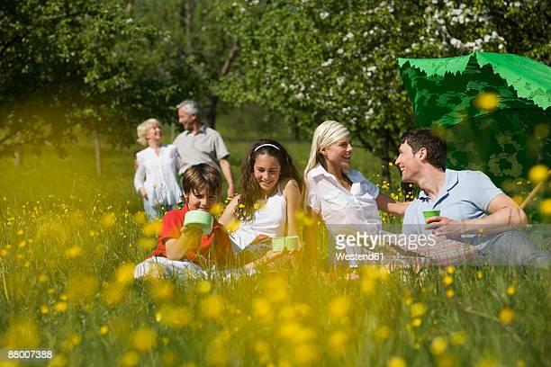 Germany, Baden Wuerttemberg, Tuebingen, three generation family having picnic in meadow