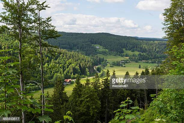 Germany, Baden Wuerttemberg, View of Black Forest