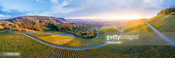 germany, baden-wuerttemberg, aerial view of korber kopf, vineyards at sunset in autumn, panorama - baden württemberg stock pictures, royalty-free photos & images
