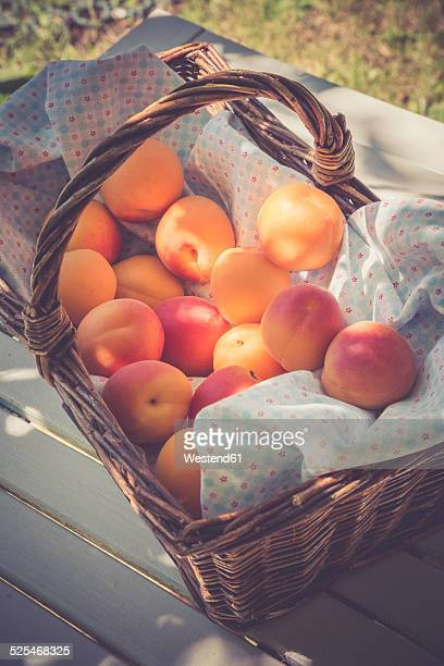 Germany, Baden-Wuerttemberg, Apricots in a basket, Prunus Armeniaca