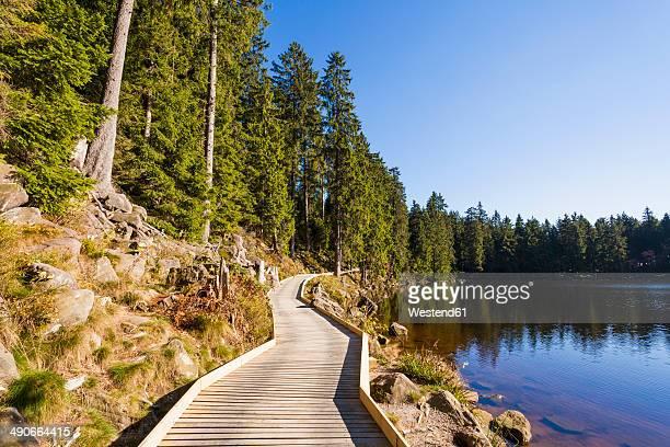 Germany, Baden-Wuerttemberg, Black Forest, Northern Black Forest, wooden boardwalk at Mummelsee