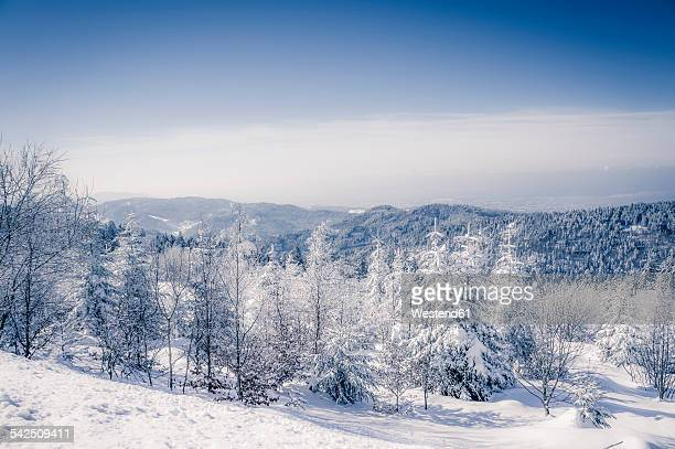 Germany, Baden-Wuerttemberg, Black Forest, snow-covered landscape