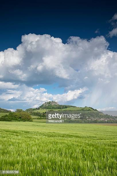Germany, Baden-Wuerttemberg, Constance district, Hegau, View to Hohentwiel, Barley field