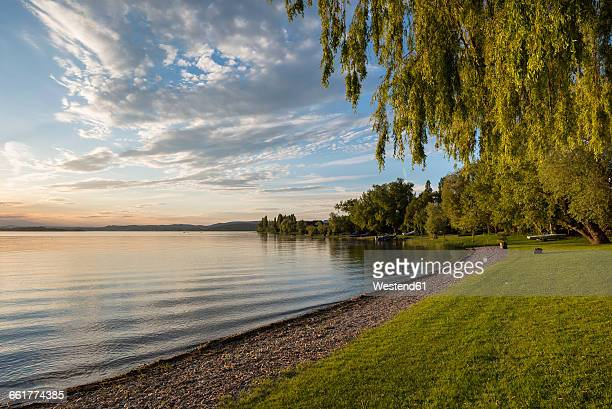 germany, baden-wuerttemberg, constance district, lakeshore of reichenau island in the evening - bodensee stock-fotos und bilder