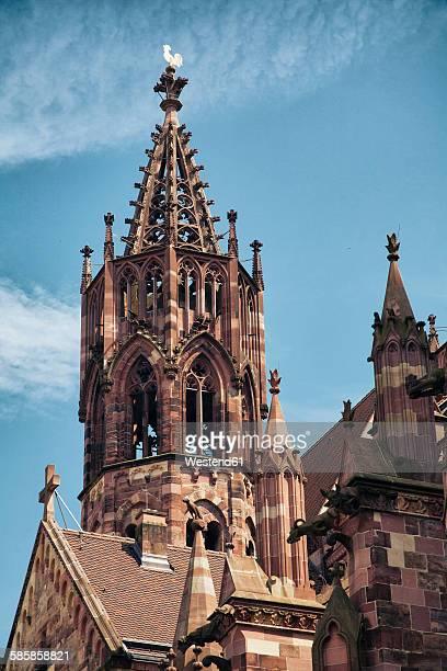 germany, baden-wuerttemberg, freiburg, freiburg minster - minster - fotografias e filmes do acervo