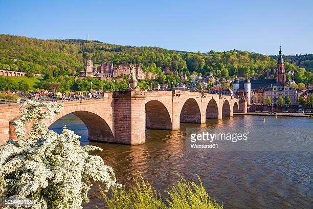 Germany, Baden-Wuerttemberg, Heidelberg, Old town, Old bridge, Church of the Holy Spirit and Heidelberg Castle