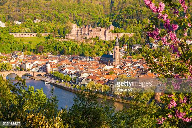 Germany, Baden-Wuerttemberg, Heidelberg, View to Old town, Old bridge, Church of the Holy Spirit and Heidelberg Castle