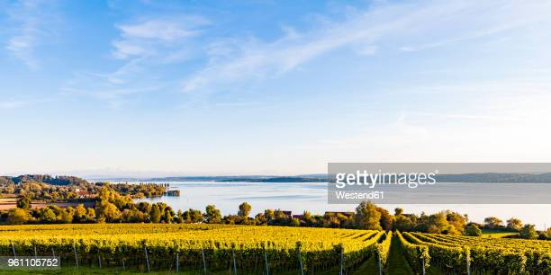 Germany, Baden-Wuerttemberg, Panoramic view of Lake Constance near Ueberlingen, vineyards