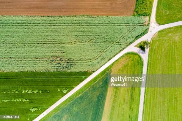germany, baden-wuerttemberg, schurwald, aerial view of fields in spring - crossroad imagens e fotografias de stock