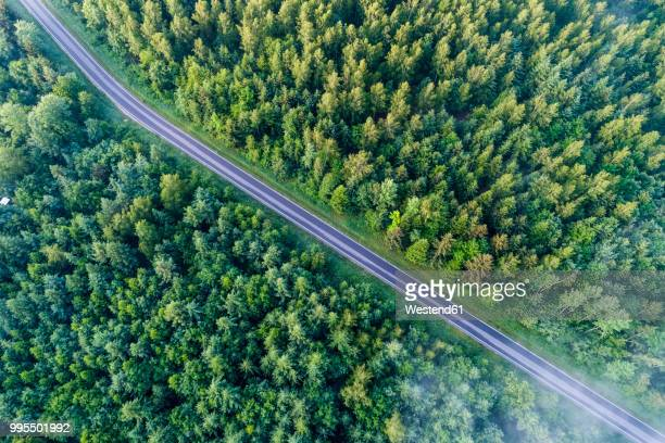 germany, baden-wuerttemberg, swabian alb, schurwald, empty country road in spring - freie straße stock-fotos und bilder