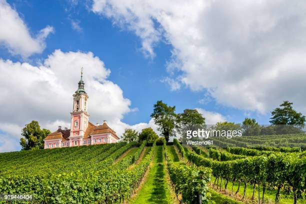 germany, baden-wuerttemberg, uhldingen-muehlhofen, birnau, basilica and vineyard - baden württemberg stock pictures, royalty-free photos & images