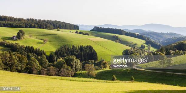 germany, baden-wurttemberg, black forest, black forest farm near st. maergen - baden württemberg stock pictures, royalty-free photos & images