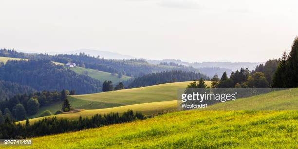 Germany, Baden-Wurttemberg, Black Forest, Fields and forest with farmhouse in background