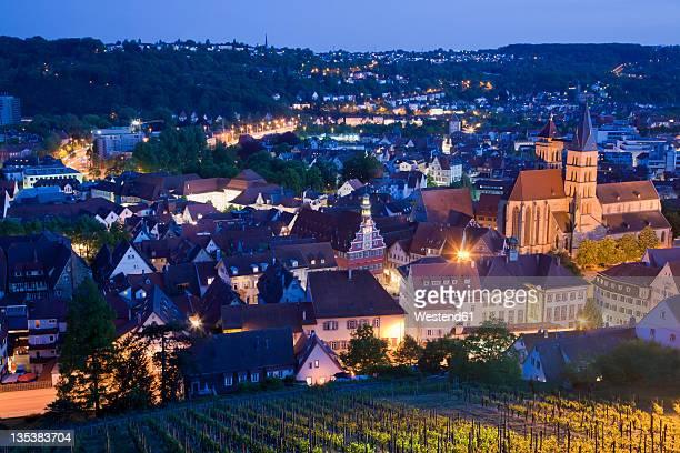 Germany, Baden-Wurttemberg, Esslingen am Neckar, View of cityscape and vineyard at dusk