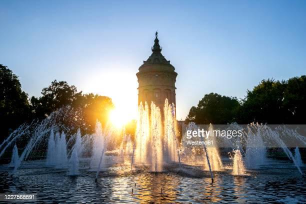 germany, baden-wurttemberg, mannheim,wasserturm fountain at sunset - mannheim stock-fotos und bilder