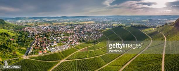 germany, baden-wurttemberg, rems valley, korb with vineyards at the korber kopf - baden württemberg stock-fotos und bilder
