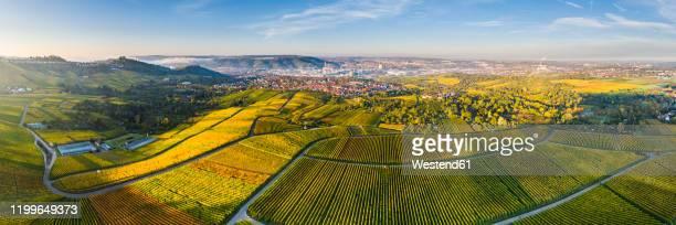 germany, baden-wurttemberg, stuttgart, aerial panorama of vast countryside vineyards in autumn - stuttgart stock-fotos und bilder