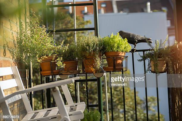 germany, balcony with chair and potted herbs - balkon stock-fotos und bilder